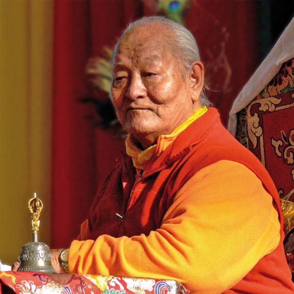 Namkhai Norbu, Chogyal