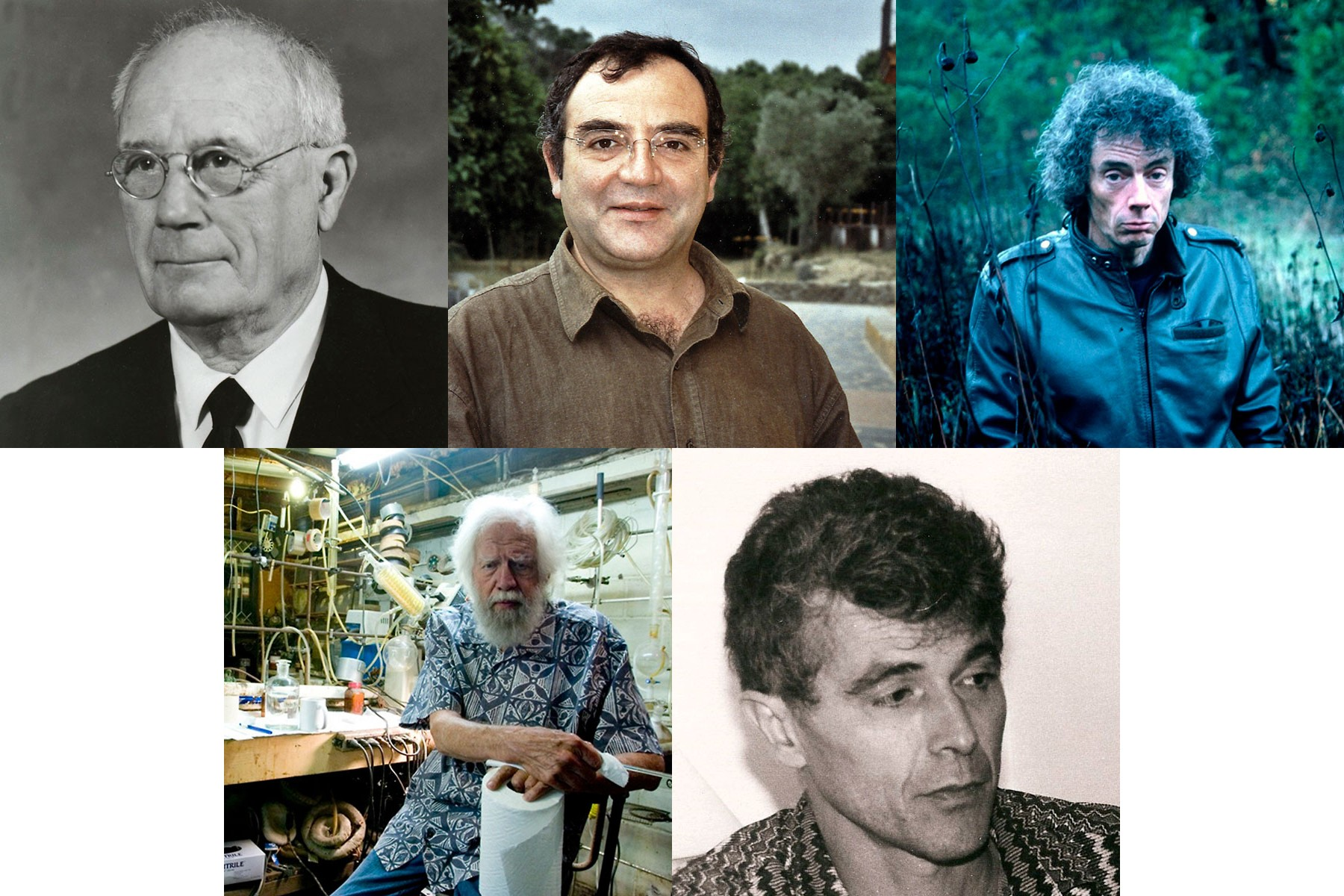 Evans, R., Fericgla, J M, Ott, J, Shulgin, A, Samorini, G
